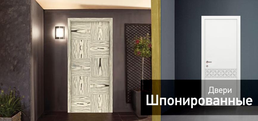Купить шпонированные двери в Киеве